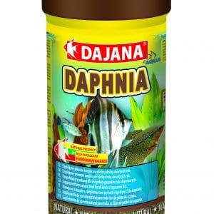 Daphnia 100ml/20g