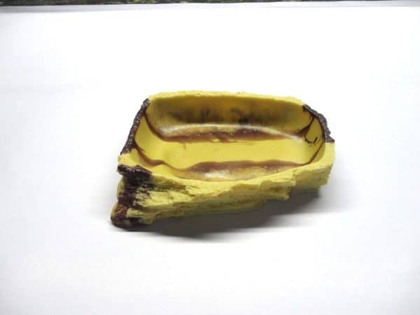 Plate Dish for Reptiles