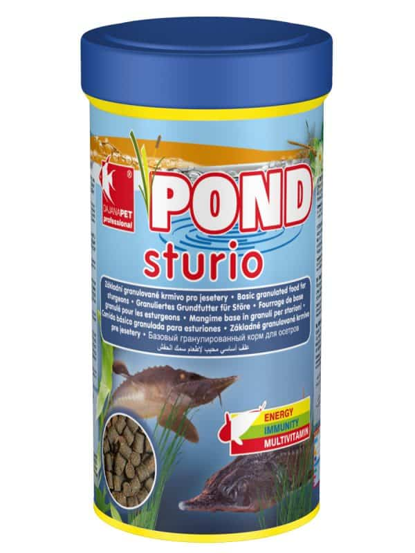 Pond Sturioi Sturgeon Food