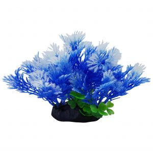 Blue Plant on Base