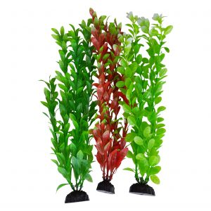Green & Red Seaweed Aquarium Plants 12-13 Inch