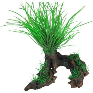 Tree Root with Plants
