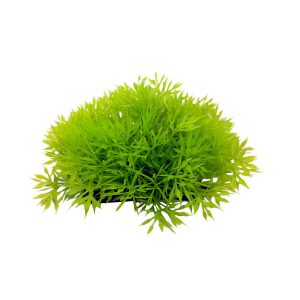 Aquarium Cover Plant 4.5 Inch Wide by 2 Inch Tall