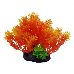 Orange Color Plant On Base