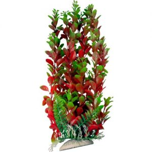 Burgundy & Green Aquarium Plant with Base 12 Inch Tall