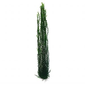 Pondh2o Artificial Pond Plant 39 Inches Tall