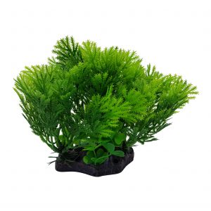 Green Plant on Base, Aquarium Ornament